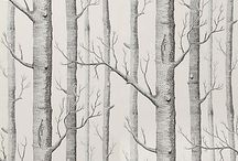 Birch Tree / by Katherine Ploit