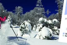 Sports d'hiver dans le Pays Basque et le Béarn / Découvrez les stations de ski et toutes les activités de neige dans le département des Pyrénées-Atlantiques.