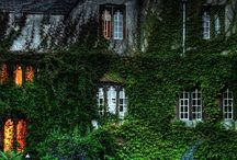 I want to go there ! / by Paula Loveless