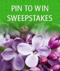 My Pinteresting Mom Sweepstakes