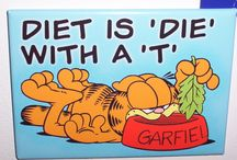 Garfield / One and only cat I loved and I will love =o)