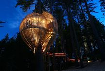 The Most Amazing Treehouses From Around The World