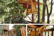 Treehouse / by Licia Watters