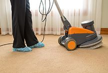 Carpet Cleaners Mawson Lakes / Ladybird Carpet & Upholstery Care
