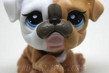 lps bulldog