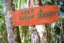 Keep a Clean Scene / DIY Cleaning Products / by Brandy Jones