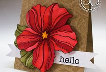 Cards Hero Arts Floral / by Vania May