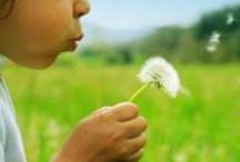 Çocukluk  / Hayat başlar