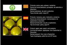 Agrop. i Sec. de Crèdit de Juenda SCCL / Cooperativa de Fruita de Juneda