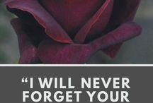 Encouraged to Encourage