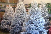 Christmas / Christmas Time at Bayer's Garden Shop