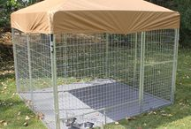 """Professional Dog Kennels / Our Kennel Pro Series are made for the veterinarian, pet resort operator, shelter manager, breeder and K9 Units. K9 Kennel Store has an animal enclosure perfect for your needs. Our K9 Kennel Store team has designed and built this kennels for a safe, attractive animal enclosure that can be put together in minutes with no tools required. The """"Kennel Pro"""""""