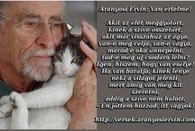 ARANYOSI ERVIN
