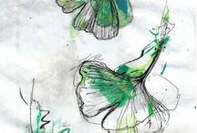 Ilustracions