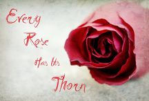 EVERY ROSE HAS IT'S THORN.... / by Helen Galanos
