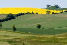 Digivisk lanskaber 2014 / her uploader du dine landskabsbilleder