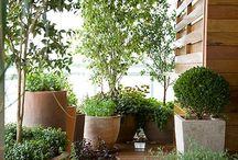 jardim / área lazer