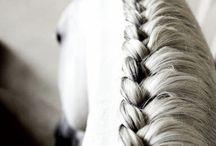 peinados para caballos