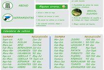 Proyectos - Huerto / proyecto de un huerto escolar y actividades / by Sara
