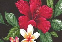 Tropical blooms
