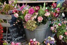 Цветочные магазинчики