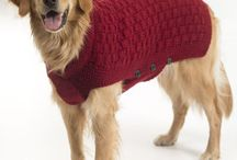 Köpek giysisi