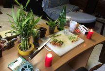 Piante e Animali / come creare talea di bambù in acqua