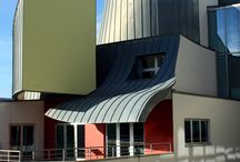 Frank Gehry / Architecture