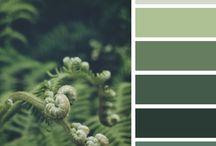 cores natureza