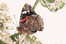 Serealain  - Fantasy & Nature - Artist / Serena Zanardo  Fantasy and Naturalistic illustrations -  watercolours and pastels on paper  ancient legends e Celtic spirituality