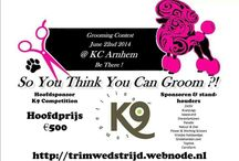 So You Think You Can Groom ?! / wedstrijd