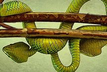 Infinite Inspirations / Tangle is a philosophy, a knowing and a not knowing.