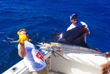 Cabo fishing charters / fishing in cabo San Lucas Mexico with tagcabosportfishing.com