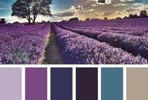 Renk kombinasyonu