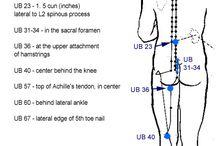 Massage trigger points