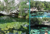 Cenotes of the Yucatan of Mexico / The Yucatan is littered with cenotes (sey-no-teys). Many of which you can snorkel, dive or just enjoy a dip.