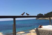 20th Wedding Anniversary Holiday - Hotel Grand Mediterraneo Resort & Spa - Corfu / I recently visited the Hotel Grand Mediterraneo Resort & Spa in Ermones Corfu for my 20th wedding anniversary.