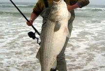 Balıkçılık teknikleri