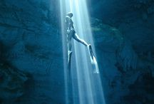 U for... Under the sea / The fabulous sea world