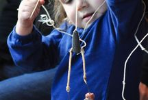 La pêche au poissons des chenaux