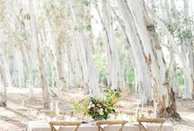 Weddings inspiration & ideas