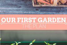 Outdoor Spaces/Garden