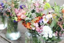 Flowers / X