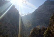 picos de europa / montaña. Asturias.