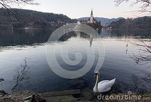 Slovenia on Dreamstime / Slovenia and the island of Bled - all these photos can be bought full size