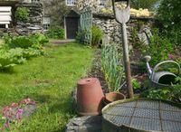 Beatrix's Potter's garden