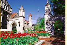 Indiana University Bloomington / by Visit Bloomington