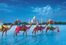 Tour India / We Bring you best tour packages at affordable prices.