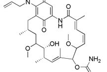 HSP90 Inhibitors