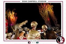 FSU Photo Retrospective / by Florida State Seminoles